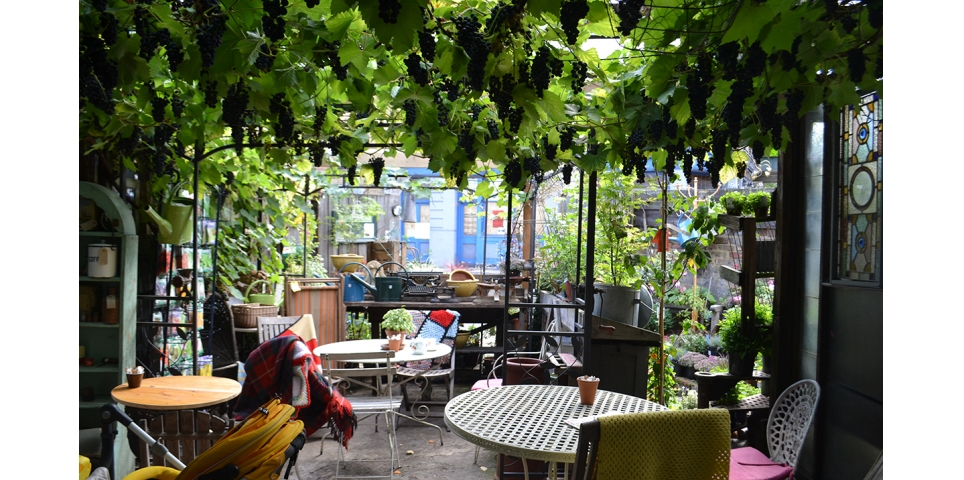 http://www.doitinlondon.com/files/2016/DRINK_FOOD/coffe-shop-garden.jpg